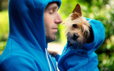 Your dog remembers everything you do -Mastorrencito Girona rural tourism